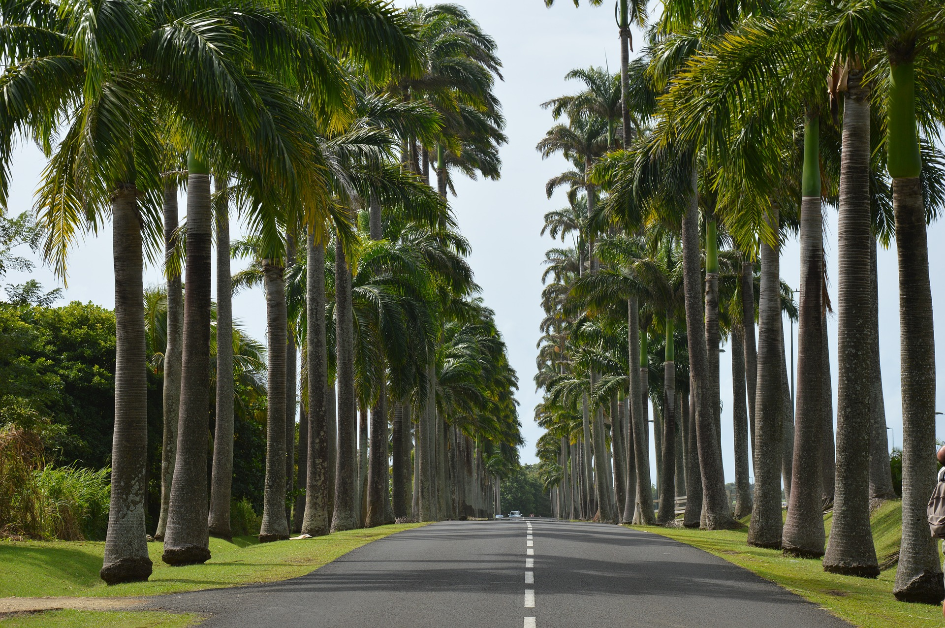louer une voiture en Guadeloupe